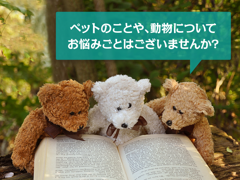 人と動物が、共生できる社会を目指して。We help your animals feel safe and happy. Call Us now!